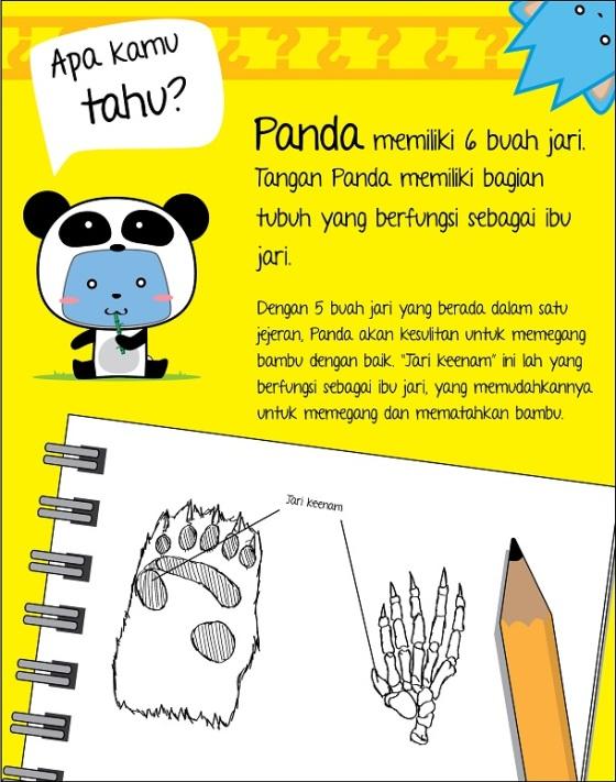 Pandafunfact