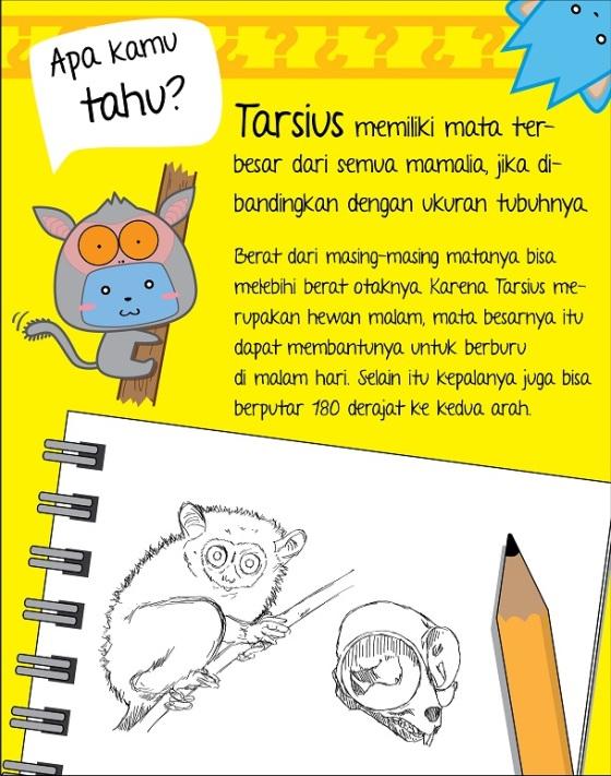 Tarsiusfunfact